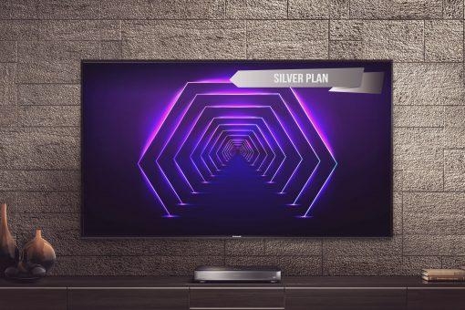 Silver Plan scaled - 1 Year Silver Plan